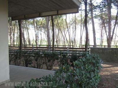 Agenzia Adriatica - Rif. 119-foto0008