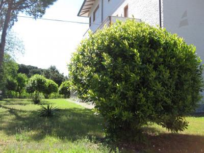 Agenzia Adriatica - Rif. 121-foto0008