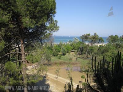Agenzia Adriatica - Rif. 146-foto0004