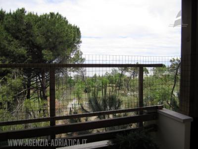 Agenzia Adriatica - Rif. 146-foto0012