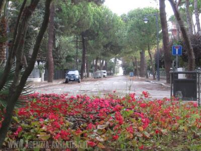 Agenzia Adriatica - Rif. 169-foto0001