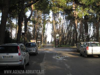 Agenzia Adriatica - Rif. 175-foto0016