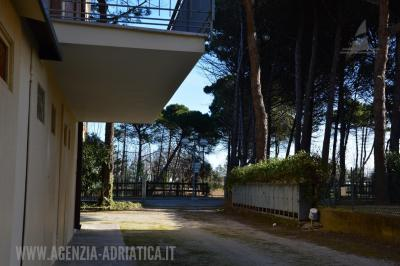 Agenzia Adriatica - Rif. 207-foto0002