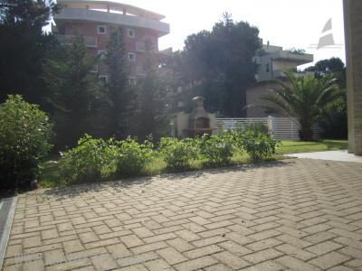 Agenzia Adriatica - Rif. 24-foto0022