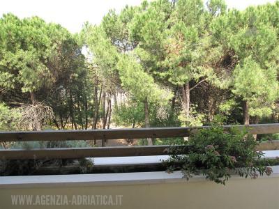 Agenzia Adriatica - Rif. 51-foto0008